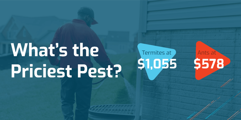Pest Control Service Prices