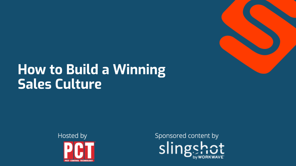 How to build a winning sales culture